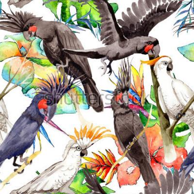 Naklejka Niebo papa ara ptasi biały wzór stylem akwarela. Dziki, ptak z latającymi skrzydłami. Aquarelle ptak dla tła, tekstury, wzoru, ramy, granicy lub tatuażu.