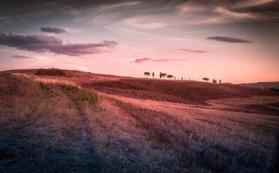 Naklejka Niesamowity krajobraz toskański