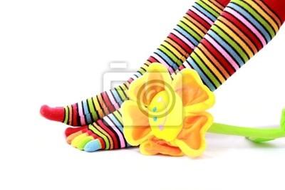 nogi kobieta w skarpeta strip na białym tle