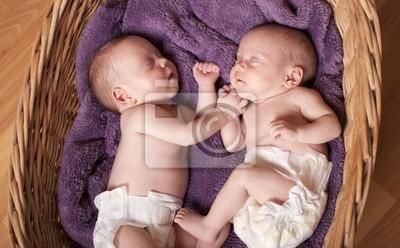 Nowonarodzone bliźniaki