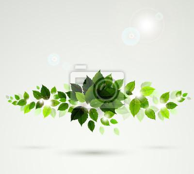 oddział ze świeżych zielonych liści