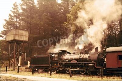 Naklejka Odlatujących pociąg parowy w kolorach sepii