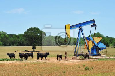 Oil Well Pumper i Bydło Brahma w zachodnim Teksasie.