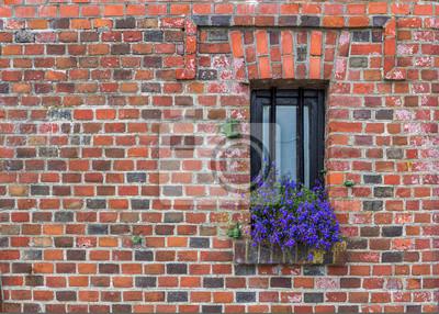 Okno z kwiatami na starym murem