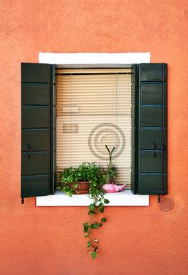 Okno z żaluzją i kwiatami w doniczce. Włochy, Wenecja, Burano