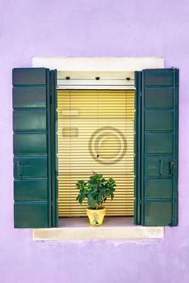 Okno z zieloną żaluzją i kwiatami w żółtym garnku. Włochy, Wenecja, Burano