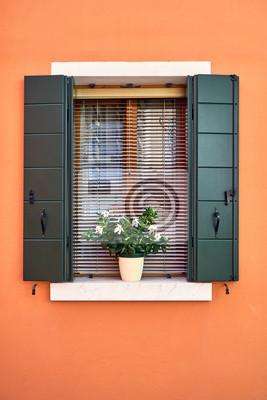 Okno z zielonymi okiennicami i białe kwiaty w doniczce. Włochy, Wenecja, Burano