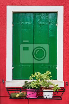 Okno z zielonymi żaluzjami na czerwieni ścianie domy z kwiatami. Włochy, Wenecja, Burano.