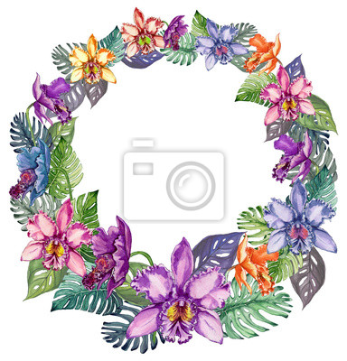 Okrągła rama wykonana z pięknych kolorowych kwiatów orchidei i liści mostera. Puste miejsce na tekst w środku. Pojedynczo na białym tle. Malarstwo akwarelowe.