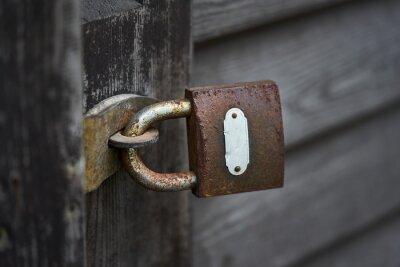 Old metal padlock on a wooden door.