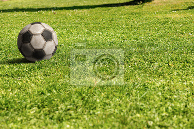 Old soccer ball on a green meadow - Football Sport