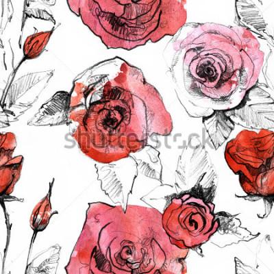 Naklejka Ołówek, akwarela ręcznie używany realistyczny czerwony kwiat róży wzór. Ilustracja sztuki malowania botanicznego. Starodawny projekt szkicownik, książki podróży, karty z pozdrowieniami, pocztówka, za