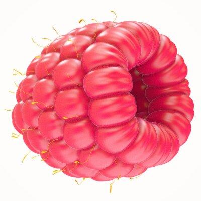 Naklejka One ripe raspberry