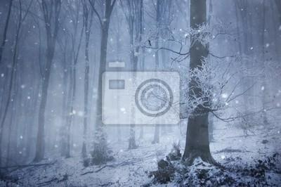 opady śniegu w magicznym lesie z ogromnego drzewa w zimie