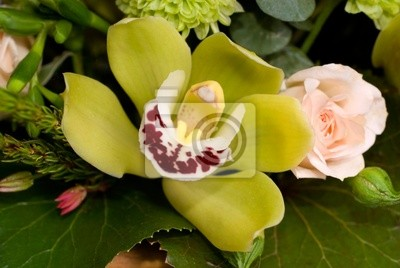 Orchidea i róża