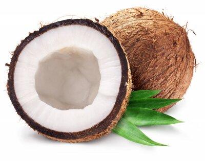 Naklejka Orzechy kokosowe i to w połowie z liśćmi.