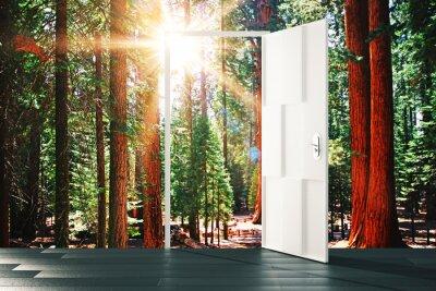 Naklejka Otwarte drzwi do słonecznej leśnej koncepcji