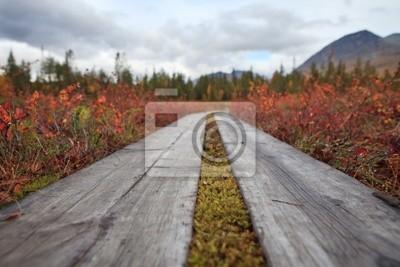 Padjelantaleden - Lappland im Herbst