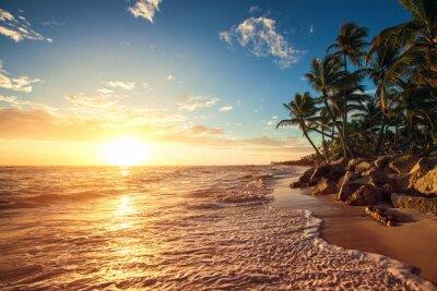 Naklejka Palmy na tropikalnej plaży