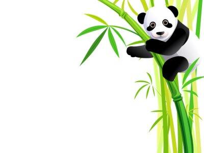 Naklejka panda na bambus