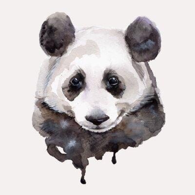 Naklejka Panda.Watercolor Vector