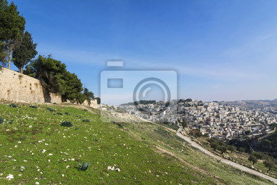 Naklejka Panoramic view of Jerusalem outside Old City Walls. Green hills, buildings, olive trees, road, blue sky, sunny day. Empty space.