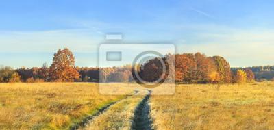 Panoramiczny widok na jesień natura krajobrazie na słonecznym dniu. Żółci i czerwoni drzewa na łące i błękitnym jasnym niebie. Niesamowita wiejska scena. Spadek. Żywa sceneria złoty pole z kolorowymi