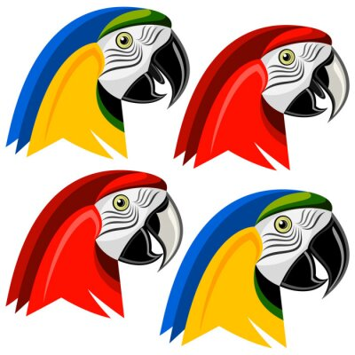 Naklejka Papuga
