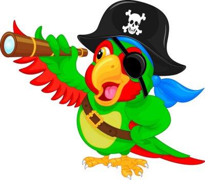 Naklejka papuga pirata kreskówki