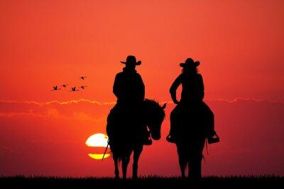 Naklejka para sylwetka konia