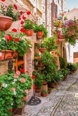 Naklejka Pełne kwiatów ganku w małym miasteczku we Włoszech, w Umbrii