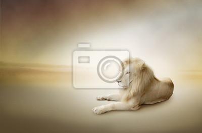Photo Luksusowe Biały lew, król zwierząt