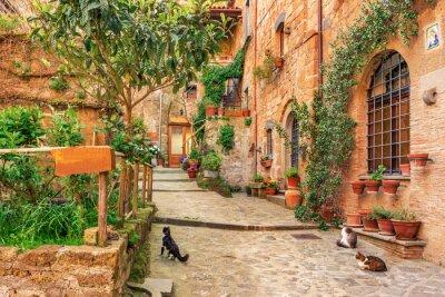 Naklejka Piękna aleja w starym mieście Toskanii