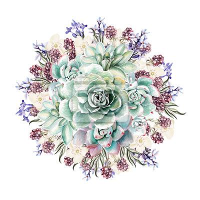 Piękne Akwarele bukiet z sukulentów i lawendy. Jeżyny. Ilustracje.