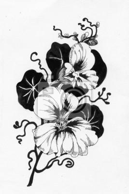 Piękne malowane kwiaty szkic