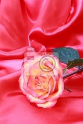 Piękne różowe na różowy satyna