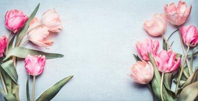 Naklejka Piękne tulipany w kolorze różowym pastelowe na jasnoniebieskim tle, widok z góry, ramki, obramowanie. Piękna karta z pozdrowieniami z tulipanów na Dzień Matki, wesele lub szczęśliwy wydarzenie