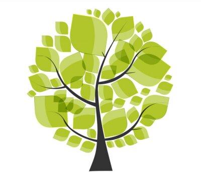 Naklejka Piękne zielone drzewo na białym tle ilustracji wektorowych.