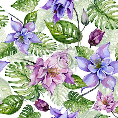 Piękni kolombiny kwiaty, aquilegia lub egzotyczni monstera opuszczają na białym tle. Malarstwo akwarelowe. Tropikalny kwiatowy wzór.
