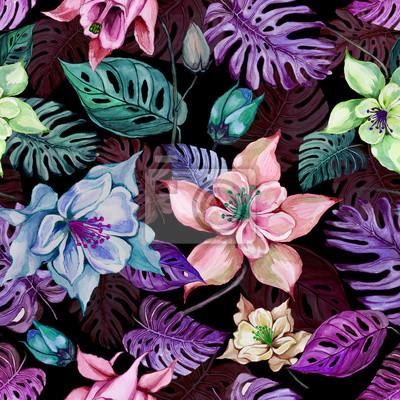Piękni kolombiny kwiaty, Aquilegia lub egzotyczny monstera opuszczają na czarnym tle. Malarstwo akwarelowe. Tropikalny kwiatowy wzór.