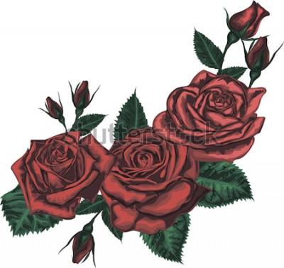 Naklejka Piękny bukiet z czerwonych róż. Realistyczna wektorowa sztuka - Czerwone róże na białym tle. - Element projektu karty z pozdrowieniami