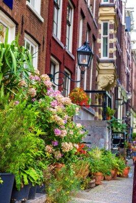 Naklejka Piękny dom w Amsterdamie