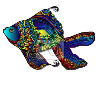 Piękny jasny ryby