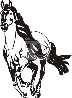 Piękny koń.