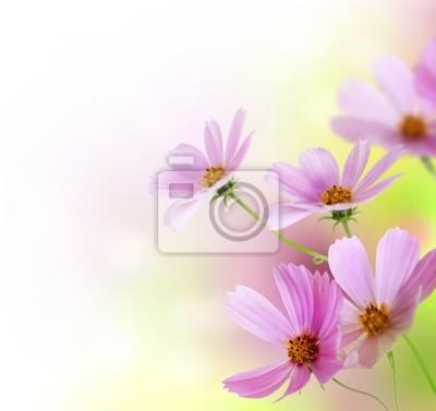 Piękny kwiatowy wzór Border.Flower