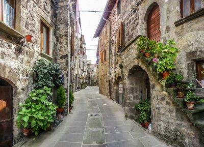 Naklejka Piękny widok starych tradycyjnych domów i idyllicznym alejki w historycznym mieście Vitorchiano, Viterbo, Lacjum, Włochy