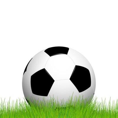 Piłka nożna leżącego w trawie