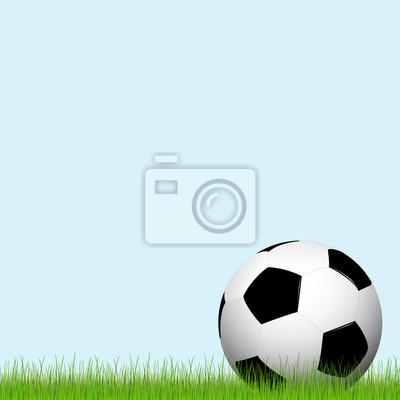 Piłka nożna liegt im Gras