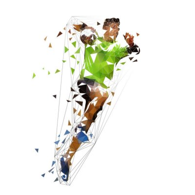 Piłkarz ręczny strzelanie piłkę, ilustracji wektorowych streszczenie wielokątne. Na białym tle rysunek low poly