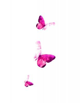 Naklejka Pink flying butterflies in watercolor. Mixed media. Vector illustration